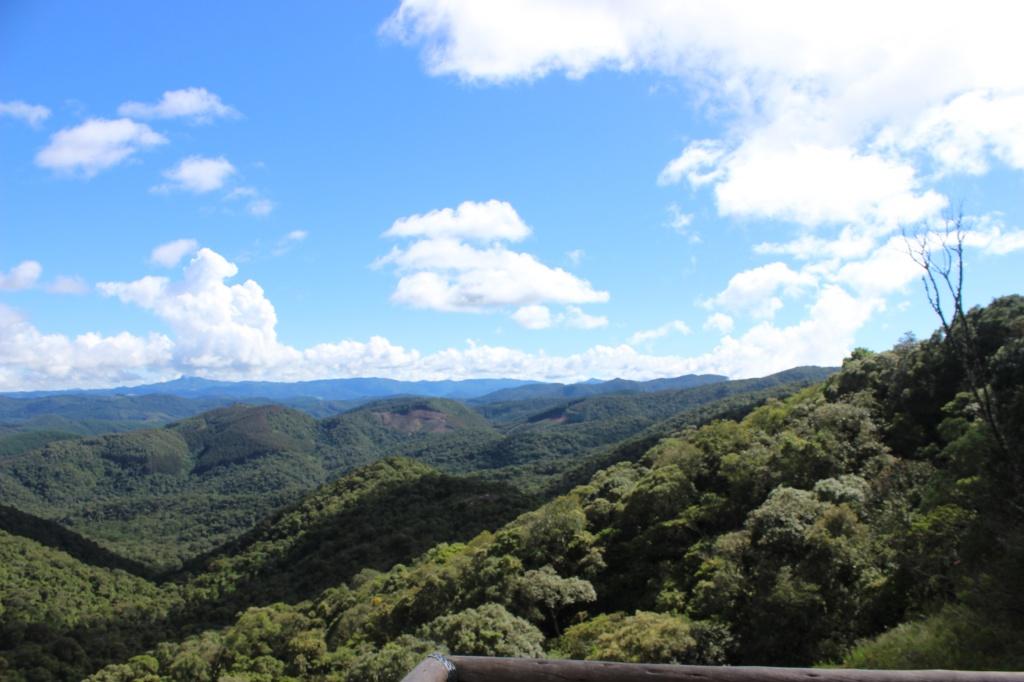 Vista Pedra Redonda - Demétrio César Xavier